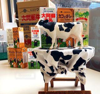 牛の写真・画像素材[388127]