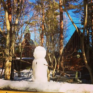 雪の写真・画像素材[395388]