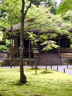 No.455131 京都