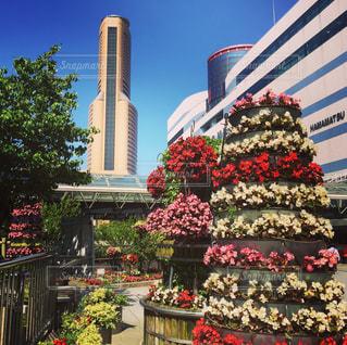 浜松の駅前フラワーポットからアクトタワーの写真・画像素材[546686]