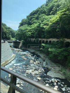 6月の箱根の写真・画像素材[3300729]
