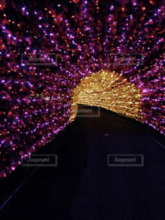 トンネル イルミネーション ライトアップ 夜景の写真・画像素材[390349]