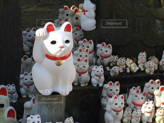 招き猫の写真・画像素材[390725]