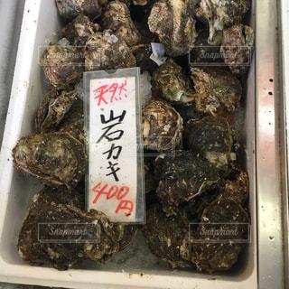 牡蠣の写真・画像素材[390844]
