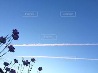 空の写真・画像素材[464678]