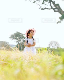 草の中に立っている女の子 - No.712960