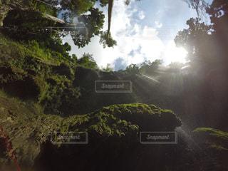 自然の写真・画像素材[394862]