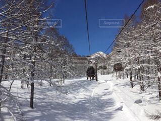 冬 - No.392582