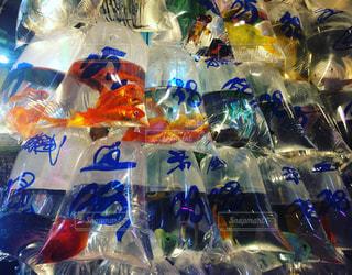 魚 - No.393758