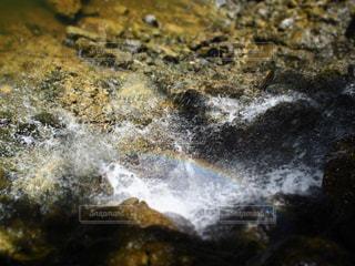 自然の写真・画像素材[394836]