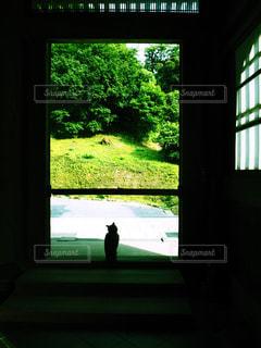 屋内の写真・画像素材[554184]