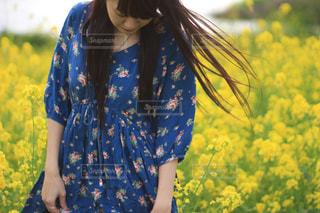 春 - No.457257