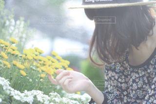 春 - No.457260