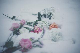 近くに雪の斜面をカバー - No.1007752