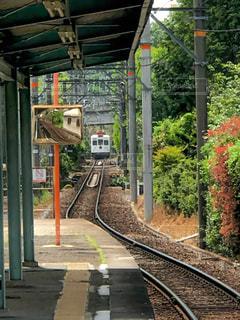 貴志川線の写真・画像素材[467049]