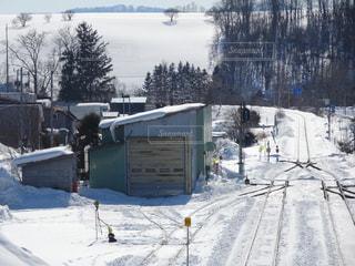 雪の写真・画像素材[395730]