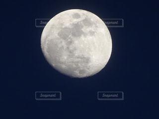 月の写真・画像素材[395868]