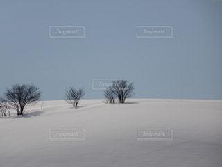 冬 - No.398950