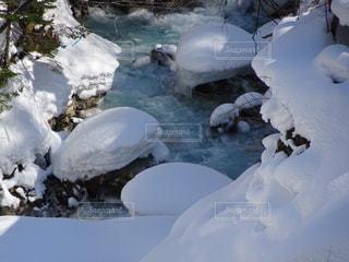 冬の写真・画像素材[398952]