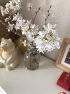 花見,お花見