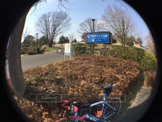 サイクリングの写真・画像素材[413176]