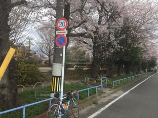 サイクリングの写真・画像素材[418470]