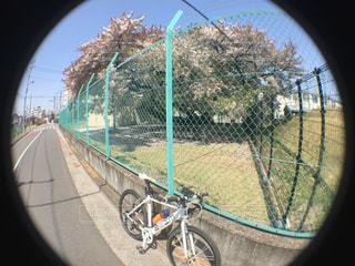 サイクリングの写真・画像素材[430853]
