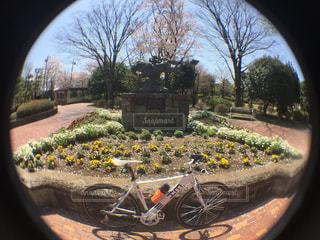 サイクリングの写真・画像素材[430856]