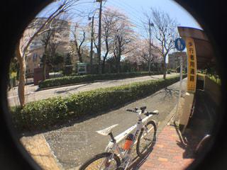 サイクリングの写真・画像素材[430857]