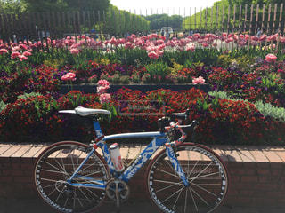 フラワー ガーデンの前に停まっている自転車の写真・画像素材[1139449]