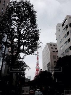 東京タワーの写真・画像素材[413393]