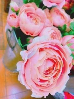 花のクローズアップの写真・画像素材[3398776]