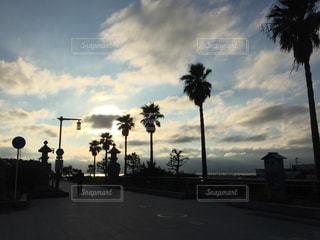 海の写真・画像素材[401099]