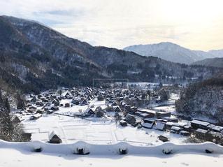 雪に覆われた山の上に立ってカモメの群れの写真・画像素材[984203]