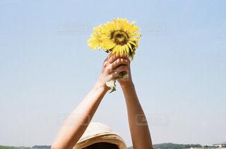 黄色のフリスビーを持っている人の写真・画像素材[1413076]