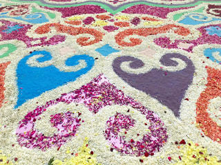 花びらの絨毯の写真・画像素材[1271588]