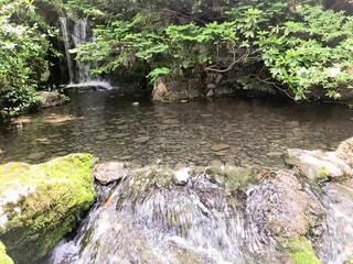 小川と小さな滝の写真・画像素材[1326817]