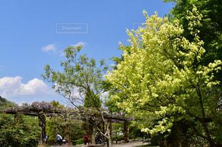 No.454874 風景
