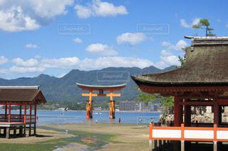 厳島神社の写真・画像素材[730008]