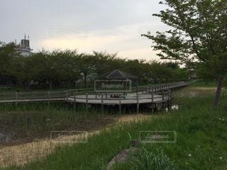 公園の写真・画像素材[443963]
