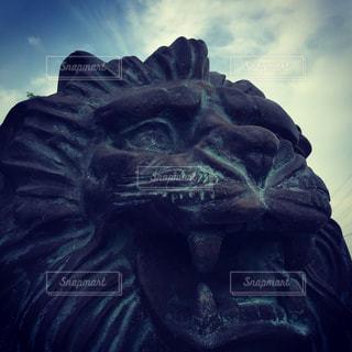 ライオンの銅像の写真・画像素材[691877]
