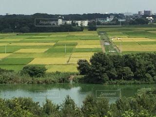 芝生のフィールドを流れる川 - No.715412