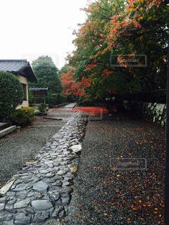 石の道 - No.750796