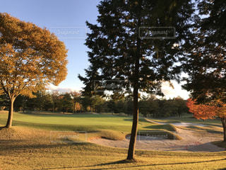 ゴルフ場の夕焼けの写真・画像素材[844849]