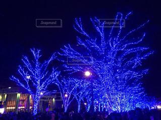 クリスマスイルミネーション - No.891214