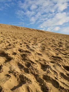 鳥取砂丘の写真・画像素材[1135883]