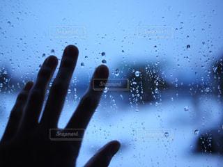雨の写真・画像素材[417221]