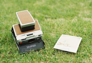 芝生の写真・画像素材[438473]