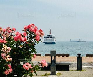 海辺で散歩の写真・画像素材[2188097]
