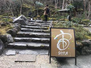 日本 - No.417133